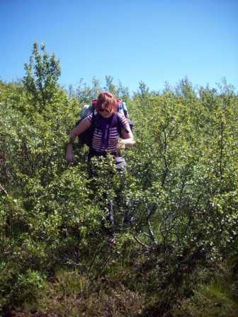 Ab durch den Busch!