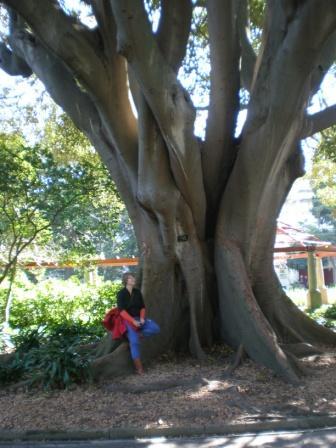 Anita am Baum