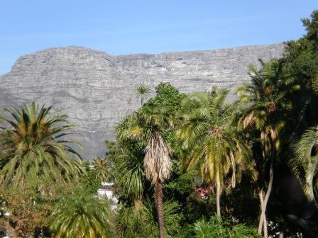 Parkkulisse mit Tafelberg im Hintergrund